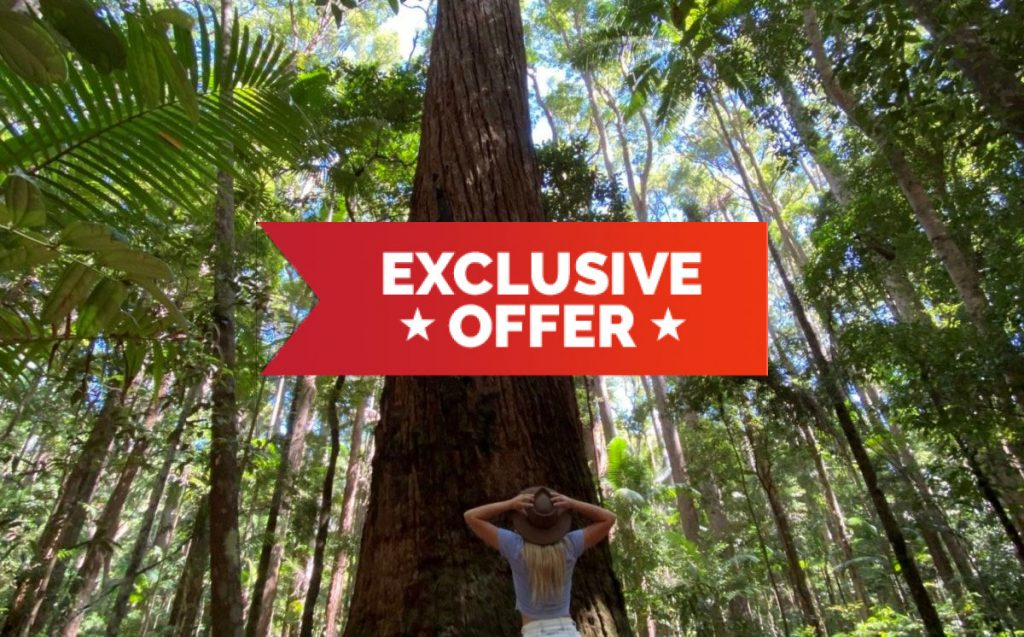 Noosa River Retreat Fraser Island Offer